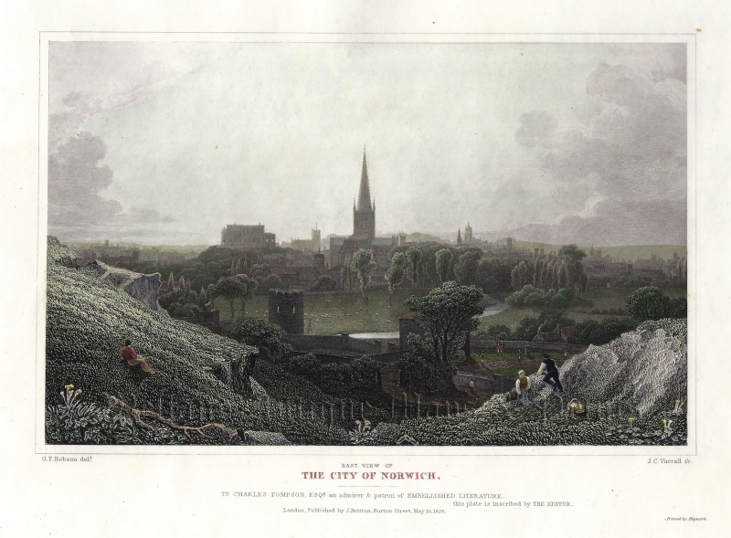 'EAST VIEW OF THE CITY OF NORWICH.' by G. F. Robson / J. C. Varrall c.1826