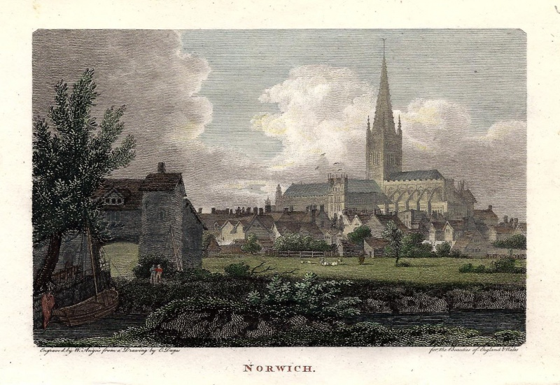 'NORWICH.' by W. Angus / E. Dayes c.1801 (Beauties of England & Wales)