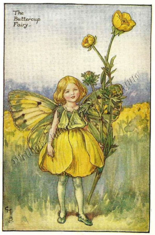 The Buttercup Fairy