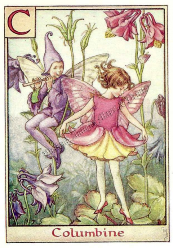 The Columbine Fairy