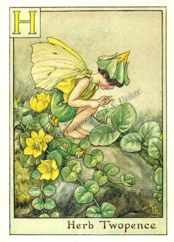 The Herb Twopence Fairy